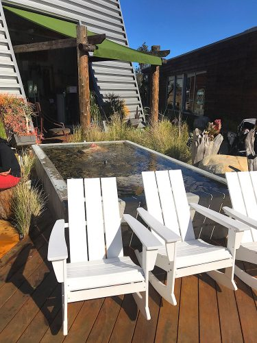 Adirondack rocking chairs sit next to a square fountain with native plans behind it in an outdoor setting.